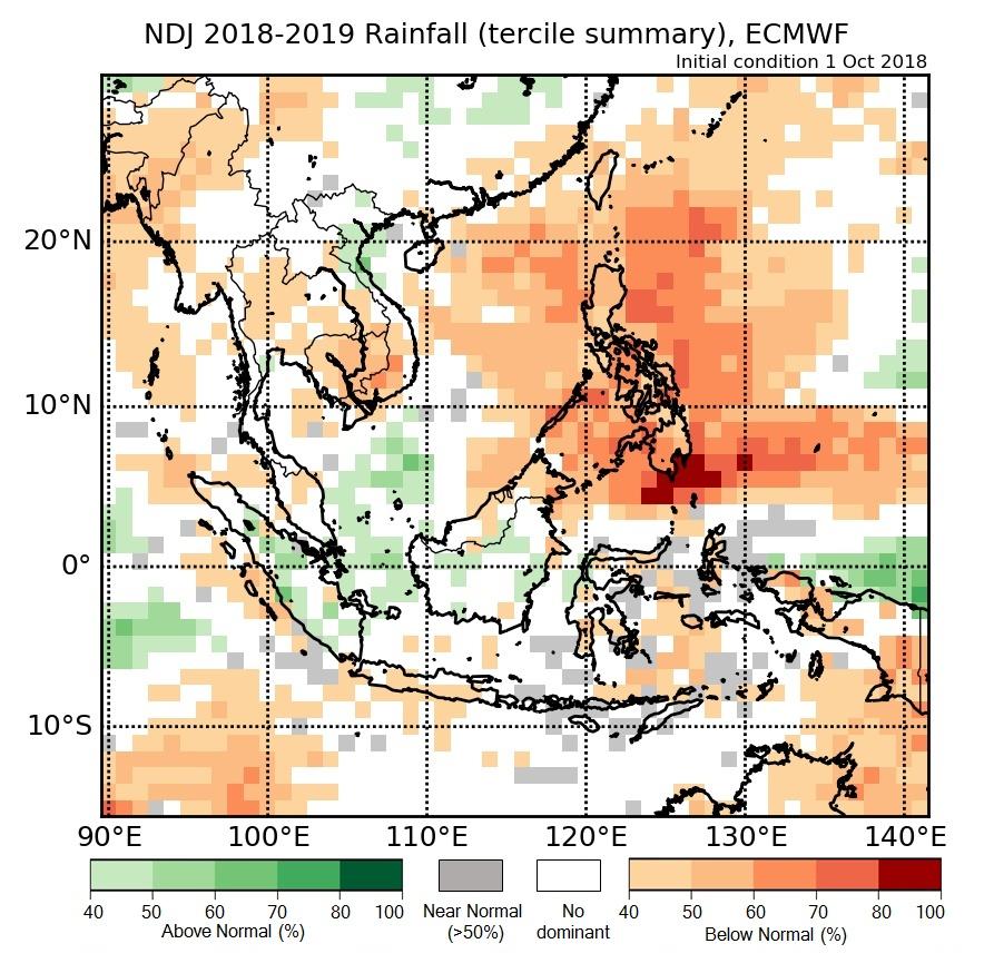 Rainfall anomaly of ECMWF model.
